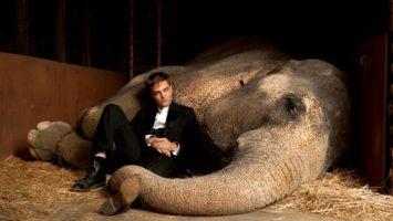 FOTO: Voda pro slony