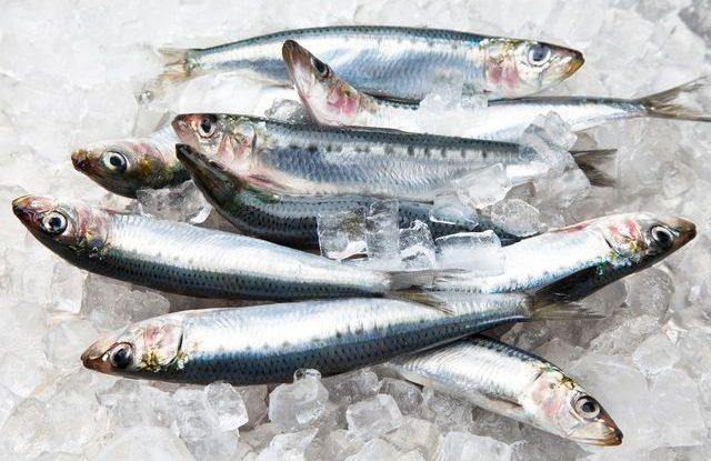 Jak rozmrazit rybu