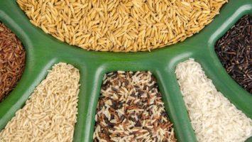 Proč jíst rýži, Hnědá rýže