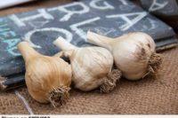 cesnek-food-nikdo-drei-vegetables-pixmac-fotka-53274983