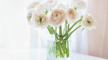 Jak udržet dlouho čerstvé řezané květiny