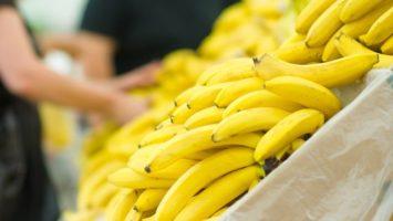 Jak vyrobit přírodní hnojivo na pokojové rostliny z banánových slupek