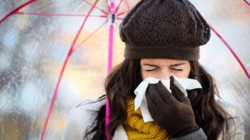 echinacea, jak podpořit imunitu