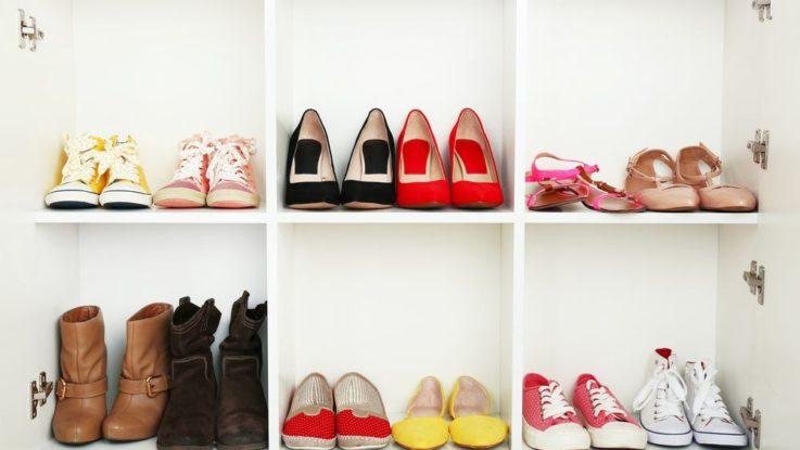Jak vybrat botník