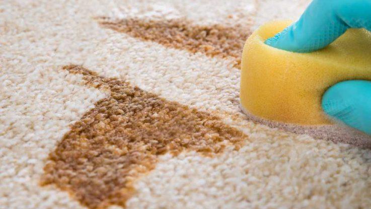 Odstraňování skvrn, čištění skvrn