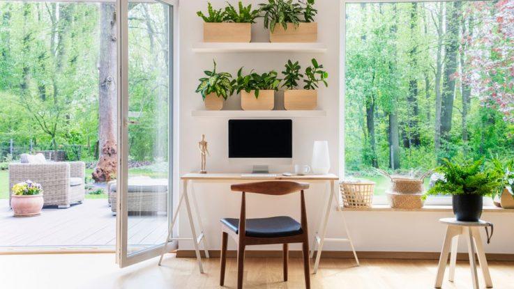 Jak vbést přírodu do vašeho bytu