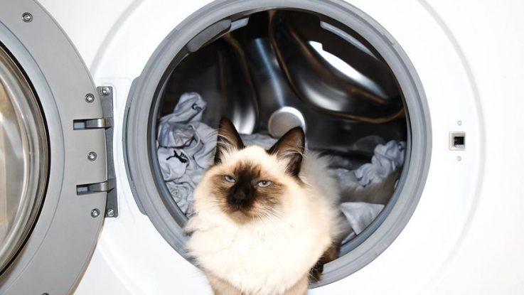 Co neprat v pračce