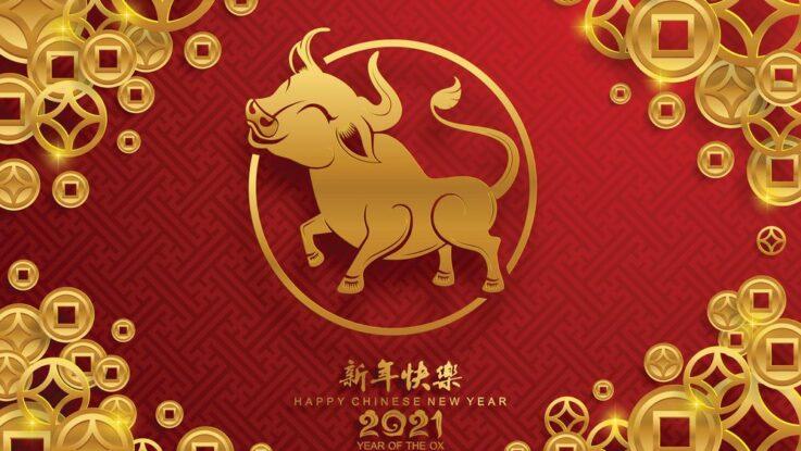 Rok Buvola čínský nový rok