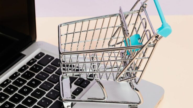On-line nakupování potravin