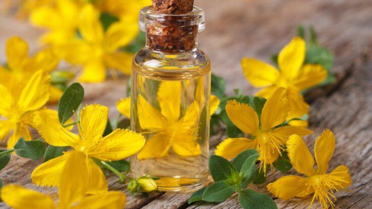 Třezalka a janův olej