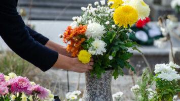 Dušičky květiny na hrob